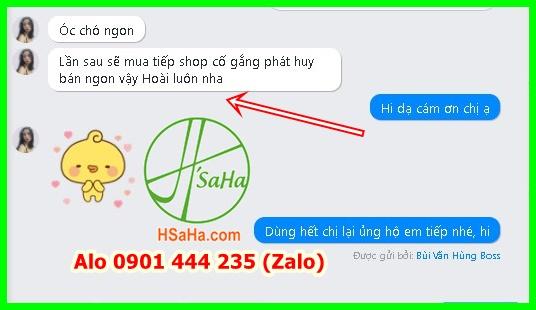 hat-oc-cho-my-hartley-hsaha-mua-2