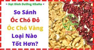 so-sanh-hat-oc-cho-do-hat-oc-cho-vang-loai-nao-tot-hon